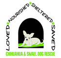 Chihuahua & Small Dog Rescue Inc | crowdfunding | online donation website