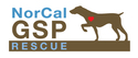 NORCAL GERMAN SHORTHAIRED POINTER RESCUE INC | online donations | crowdfunding