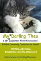 My Darling Theo Foundation | crowdfunding | online fundraising