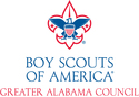 Boy Scouts of America | crowdfunding | online donation website