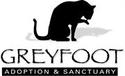 GREYFOOT CAT RESCUE | online donations | crowdfunding