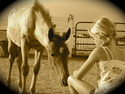 Zumas Rescue Ranch | crowdfunding | online donation website
