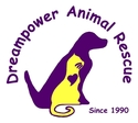 Dream Power Animal Rescue Foundation | crowdfunding | online donation websites