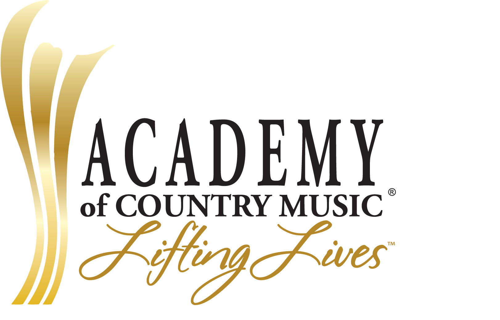 ACADEMY OF COUNTRY MUSIC CHARITABLE FOUNDATION INC | crowdfunding | online fundraising